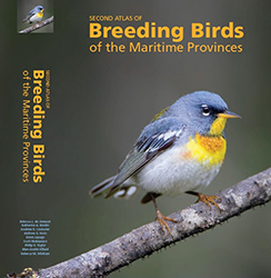 Introducing the Maritimes Breeding Bird Atlas!