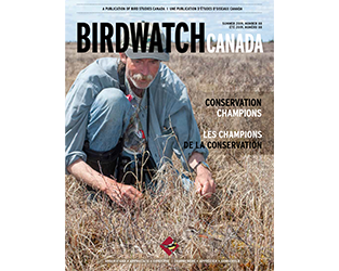 Inspiring Summer Reading in BirdWatch Canada