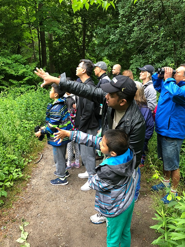 A group of birders of diverse ages looking intently at a bird in the trees