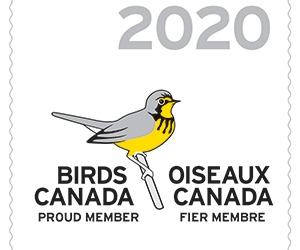 Your 2020 Birds Canada membership!