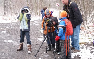 Highlights from the 2019-2020 Christmas Bird Count & CBC4Kids
