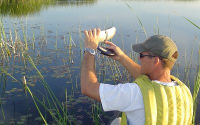 Citizen Science Programs you can Join This Spring