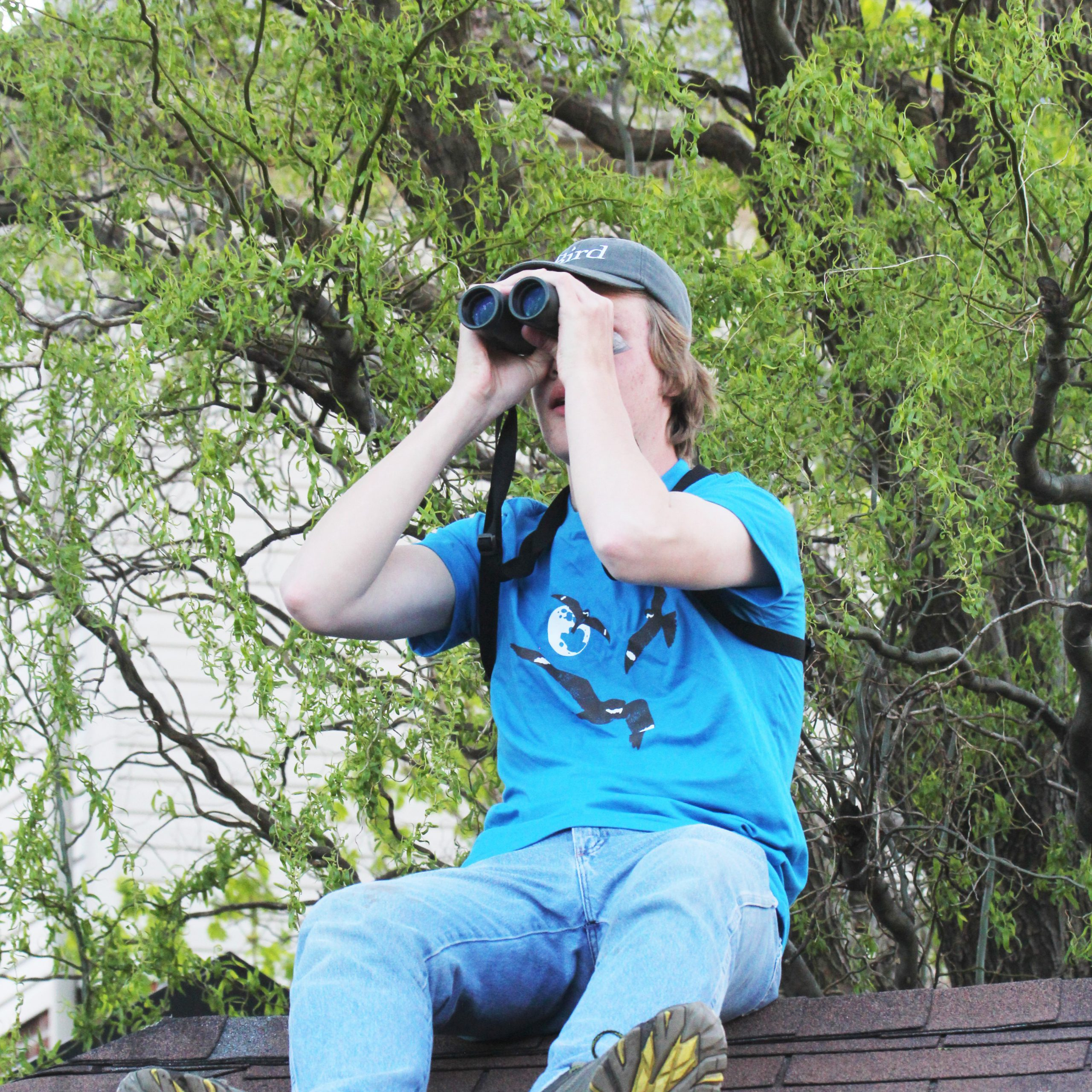 Birdathon fun spans the country and the seasons in 2020