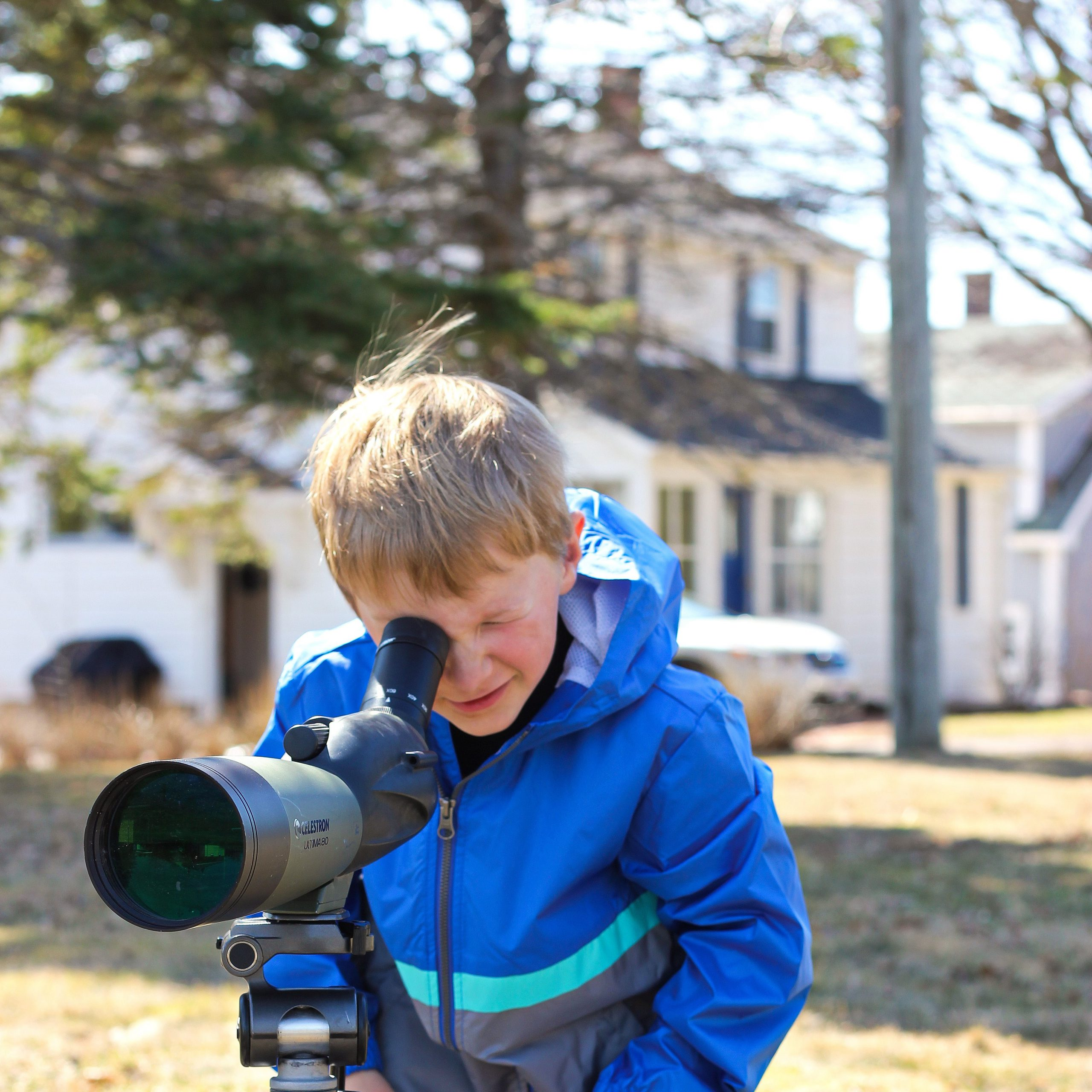 Bird Blitz at Home connects students to birds and nature