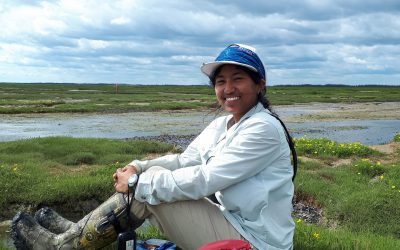 Champions behind the scenes in Great Lakes Piping Plover conservation