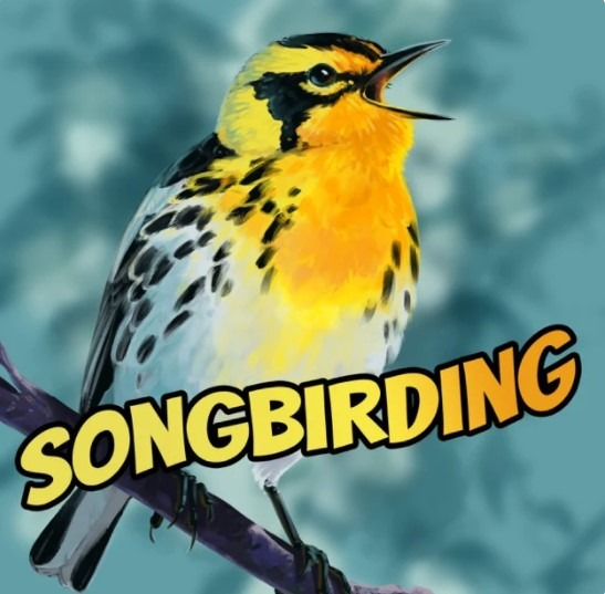 Link to Songbirding Podcast.